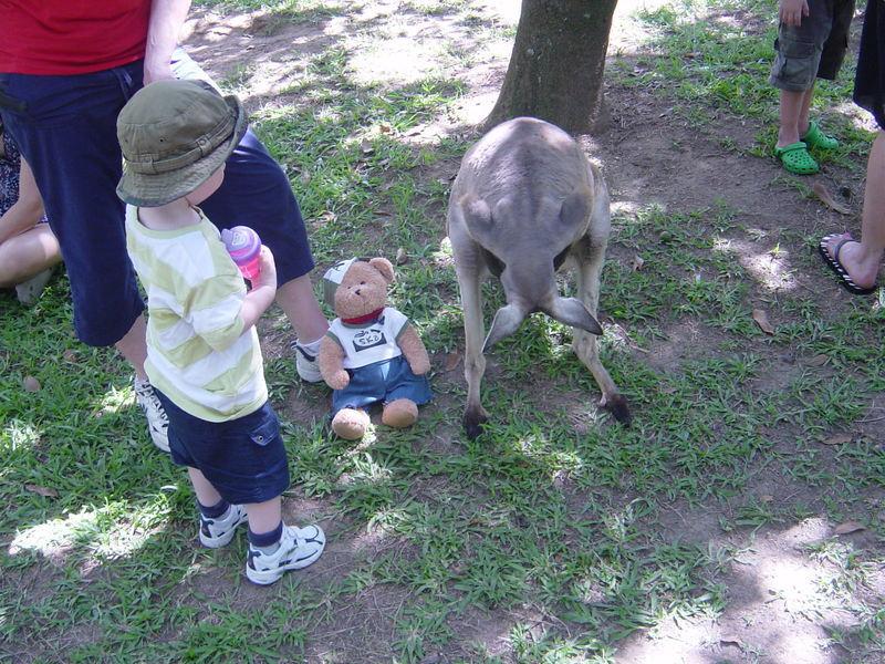Kangaroopouch