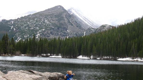 Feed c bear lake