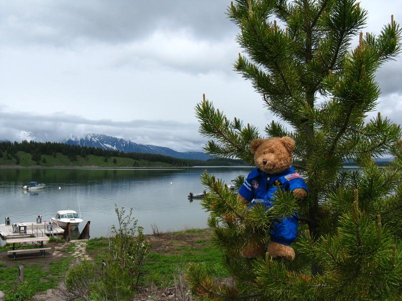 I jenny lake