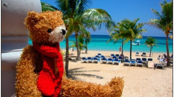 Feed treacle beach
