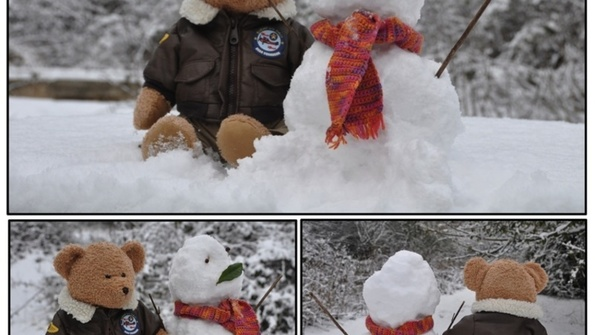 Feed boogie snowman