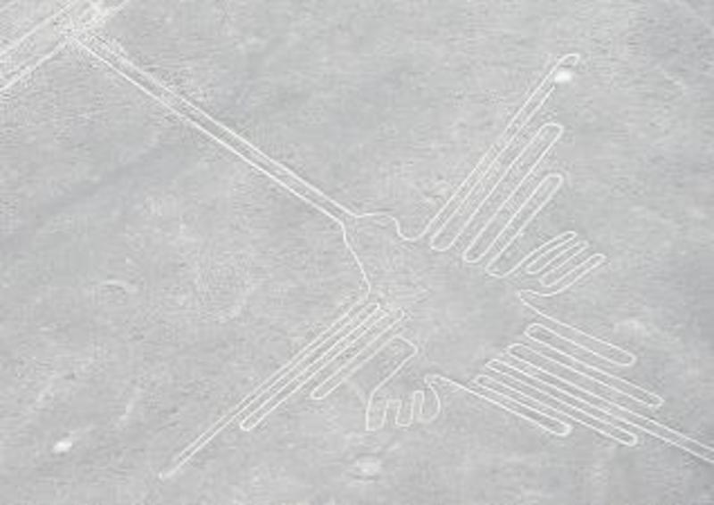 Bb nazca